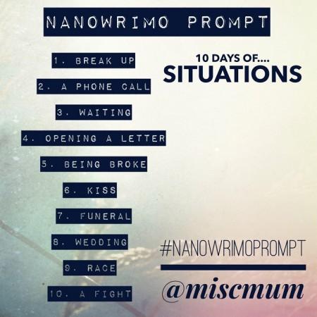 nanowrimo situations